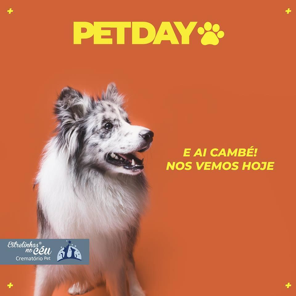 Pet Day – Cambé