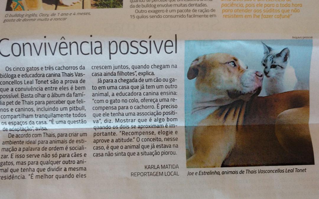 Convivência entre cães e gatos – Folha de Londrina