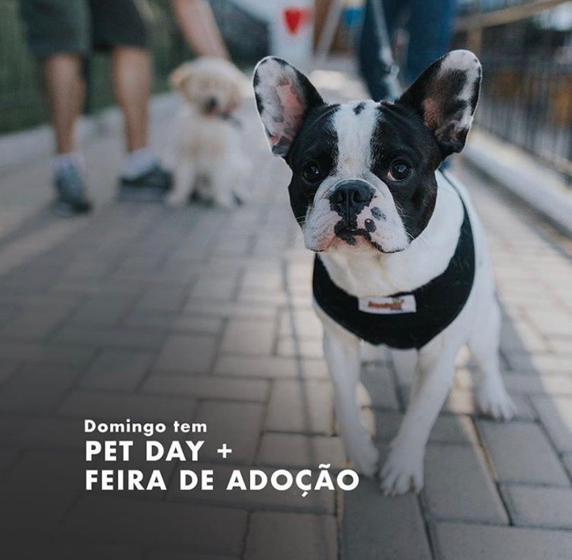 Pet Day e Feira de Adoção – Palhano Gastro Park