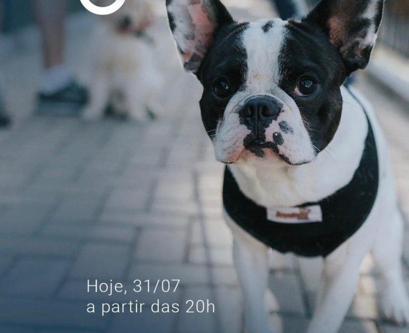 Dog Day – Palhano Gastro Park